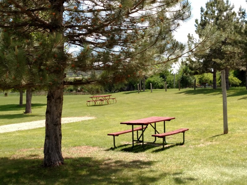 KOA Spearfish South Dakota Black Hills camping cabins pool Interstate 90 I-90